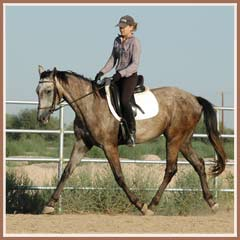 Bombay, ridden by Kailee Surplus, August 2007